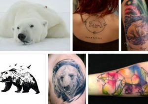 Polar Bear Tattoo & Grizzly Bear Tattoo Meaning