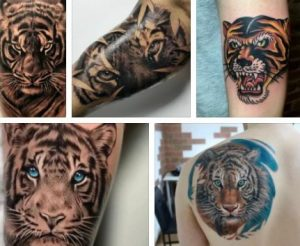 Tiger Tattoo & Japanese Tiger Tattoo