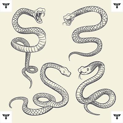 Crowley Snake Tattoo *2021 New Best Tattoo