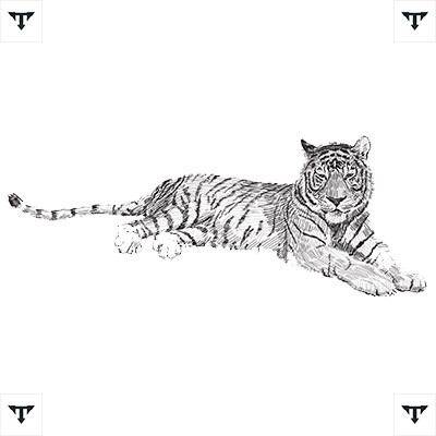 White Tiger Tattoo to Model *2021 New
